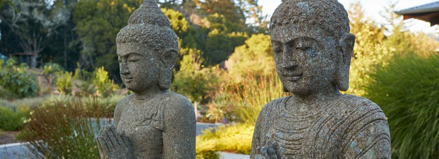 Buddha greeters in Asian/Modern landscape